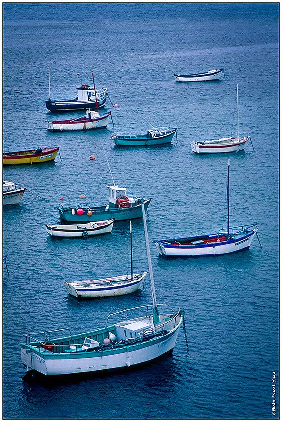 Les petits bateaux de  Molene